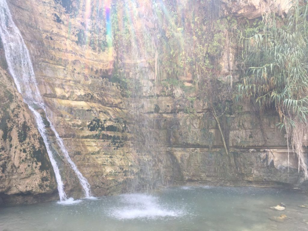 Ein Gedi Wadi David Waterfall, water and nature